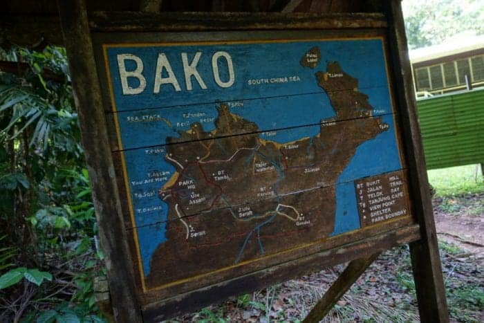Bearded Pig, Hipster pig, bako national park accommodation, bako national park tour, bako national park Entrance Fee, bako national park Hotel, bako national park day trip, Staying in bako national park, bako national park Borneo, Bako accommodation, bako national park price, bako national park lodge, Bako Borneo, Malaysia, How to get to bako national park from Kuching, Exploring the Bako National Park, Borneo: Stepping into the real Jurassic Park that is teeming with amazing animals, wildlife and jaw dropping landscapes, Proboscus Monkey, Probiscus Monkey, how to see the Proboscus monkey in Borneo, Crocodile, Hermit Crab, Viper, Spider, Poisonous Frog, Stick Insect, macaque, attack, dangerous, snake, night walk, hostel, tips,