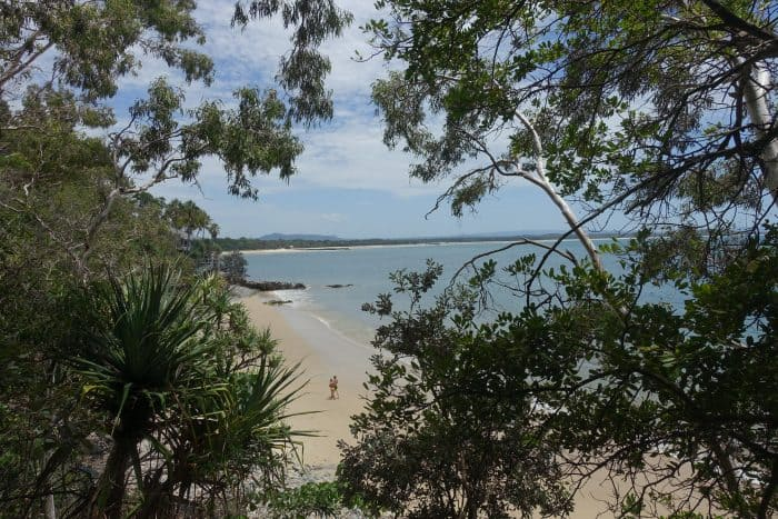 Noosa national park walk, Exploring the incredible coastline of Noosa. One of Australia's most amazing coastal walks, Noosa Heads, Queensland, surfing Noosa, best beaches in Noosa, things to do in Noosa, Surfing Australia, Noosa Main Beach, Noosa Main Beach surfing, Noosa National Park, Noosa National Park coastal walk, First Point, First Point Noosa, Boiling Point, Boiling Point Noosa, Tea Tree Bay, Tea Tree Bay Noosa, Pandanus trees, Noosa trees, secluded beach Noosa, quiet beach Noosa, Dolphin Point, Dolphin Point Noosa, Dolphin watching Noosa, Koala, wild koala, wild koala Noosa, Granite Bay, Granite Bay Noosa, Picnic Cove, Picnic Cove Noosa, Fairy Pools, Fairy Pools Noosa, Fairy Pools best time to visit, Noosa Head, Hell's Gates Noosa, Hell's Gates, Alexandria Bay, Nudist beach Noosa, Alexandria Bay Noosa, Sunshine beach, Sunshine beach Noosa, hastings street noosa, backpackers Noosa, Camping Noosa, Noosa things to do, things to do in Noosa, what to do in noosa, noosa activities, Noosa national park walk, noosa walks, things to do around noosa, best things to do in noosa, things to do noosa sunshine coast,