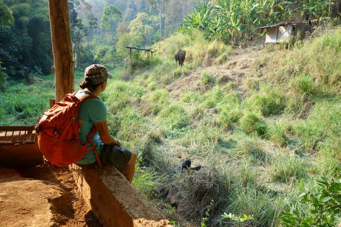 The Best Adventurous Things To Do in Thailand For Backpackers