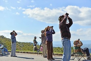 Members of the Roanoke Valley Bird Club count raptors as they soar over the ridges along the Blue Ridge Parkway.