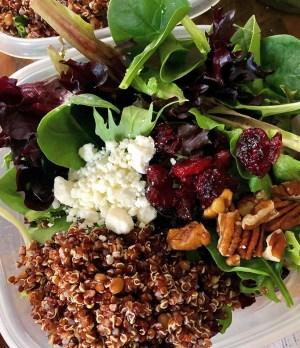 Cranberry-Quinoa Winter Salad