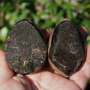 septarian calcite nodule eggs