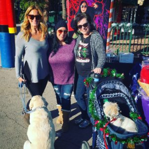 A magical day at Santa Paws. Marnie Gambit of Opportunity Village