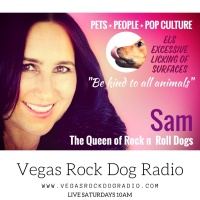 Vegas Rock Dog Radio ELS Disorder Dogs licking surfaces excessively