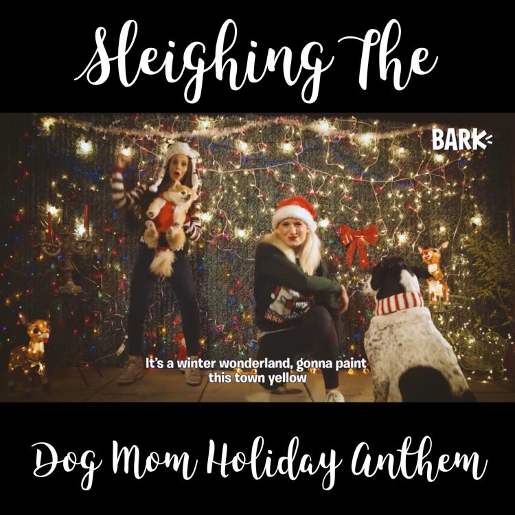 Raise Your Hands In The Air If You Sleigh As A Dog Mom