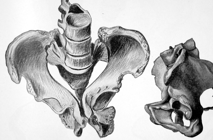 Bone and the Disease: The Rachitic Pelvis