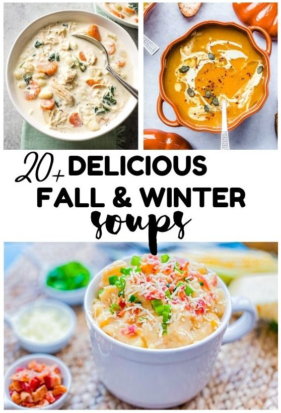 20+ Delicious Fall & Winter Soups