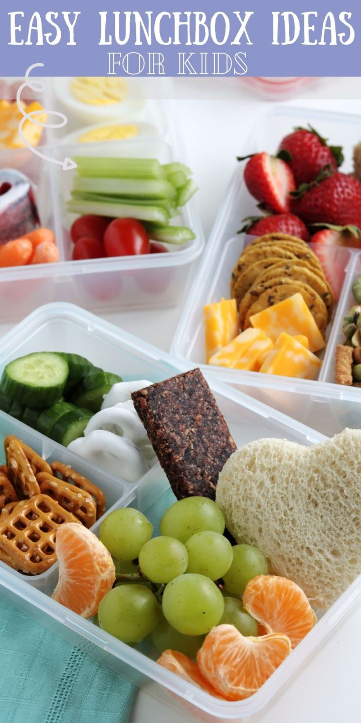 If you're on the hunt for lunch ideas that the kids will love and are easy to pack? You both will love these Easy Lunchbox Ideas for Kids.