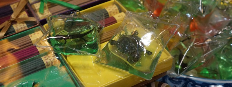 Small Animal Keychains in China Should Be Banned