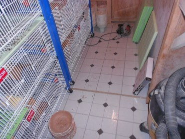 His Loft Floor