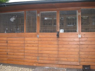 Front of loft which includes breeders and kit rollers.
