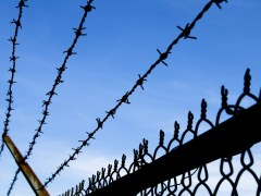 Report: prisons should be places of work
