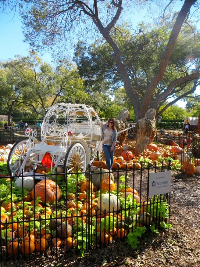 Pumpkin Village at Dallas Arboretum | The Rose Table