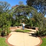 Dallas Arboretum Rose Garden | The Rose Table