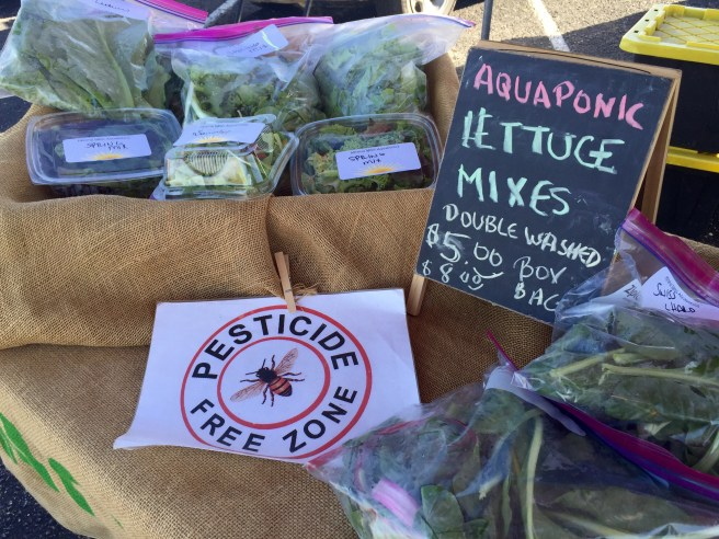 Cowtown Farmers Market | The Rose Table