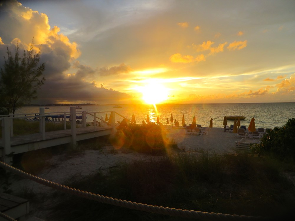 Dining Review: Asu on the Beach at Alexandra Resort in Turks and Caicos   The Rose Table