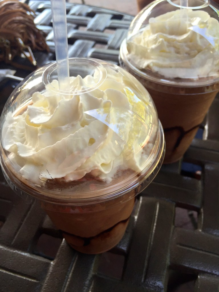 Frozen Hot Chocolate at Dallas Arboretum | The Rose Table
