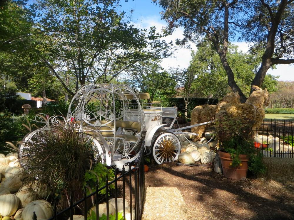 Autumn at the Arboretum, Pumpkin Village Dallas Arboretum