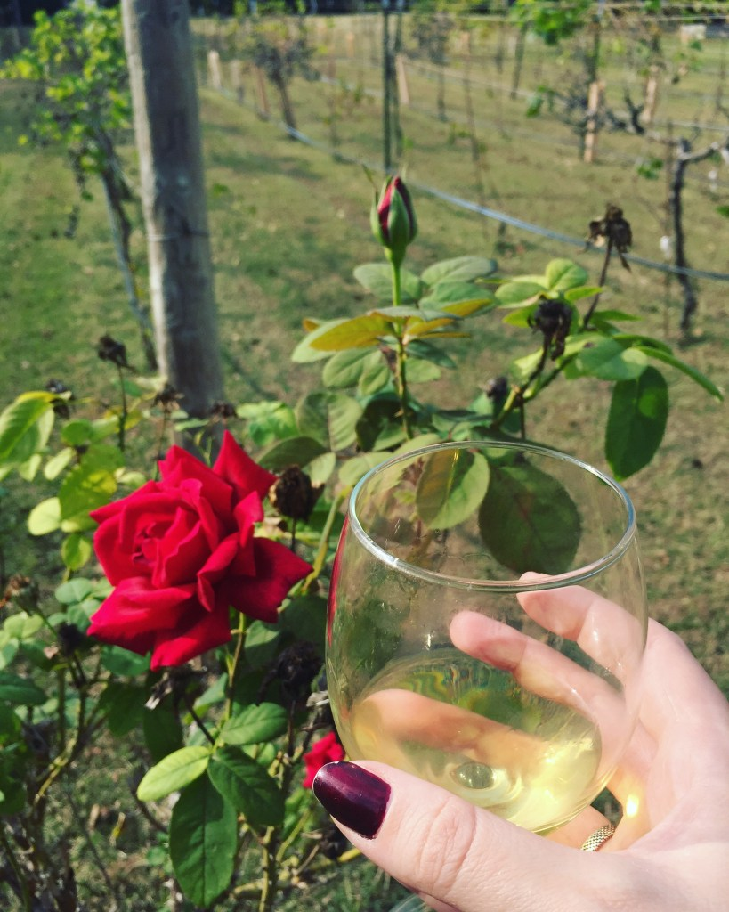 San Martino Winery and Vineyard | The Rose Table