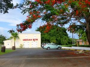 Cruzan Rum Distillery Saint Croix   The Rose Table