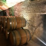 Buena Vista Winery Tour and Tasting | The Rose Table