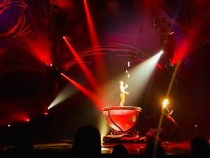 Cirque du Soleil Amaluna Review   The Rose Table