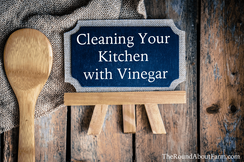 Cleaning Your Kitchen with Vinegar
