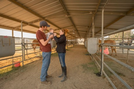 On the right, Jessa Osusky inserts pacifier to her daughter Luna, carried by her husband Greg, under the shade of a stable at Pierce College farm, on Friday, Oct. 11, 2019, in Woodland Hills, Calif. The Osusky family is among the evacuees who took their horses with them to seek shelter at Pierce during the Saddleridge Fire. (Photo by Kevin Lendio)