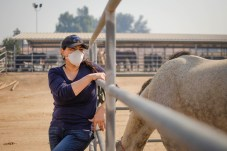 Sugey Corona leans to a metal fence at Pierce College farm after an evacuation with her 6 horses on Friday, Oct. 11, 2019, in Woodland Hills, Calif. (Photo by Kevin Lendio)