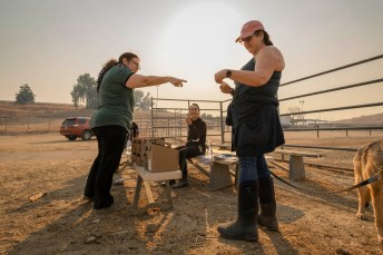 On the left, Hethar Ashasian points to a receipt on Lee Allison's (lady in pink hat) hands, while Lori Iacobellis (center) sits on the bench at the Pierce College farm, on Friday, Oct. 11, 2019, in Woodland Hills, Calif. Ashasian, Allison, and Iacobellis came from the same barn and evacuated with their horses to Pierce since 5:30AM during the Saddleridge Fire.