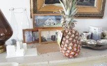 Random pineapple in the living room.