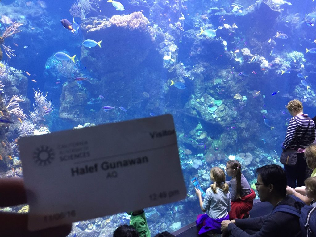 Steinhart Aquarium - My Visitor Pass
