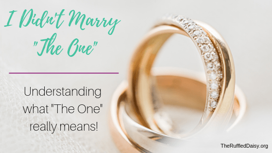 I Didn't Marry The one