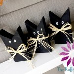 Black Cat DIY!