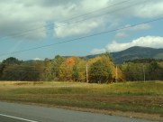 Fall colors along the roadway.