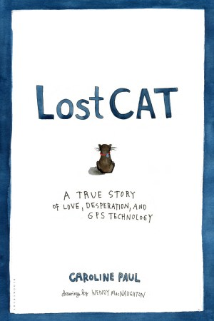 Lost Cat_cover