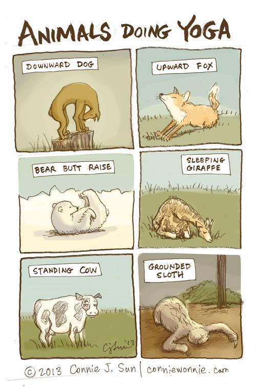 36 drawing animals doing yoga w500