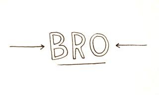 3. Bro