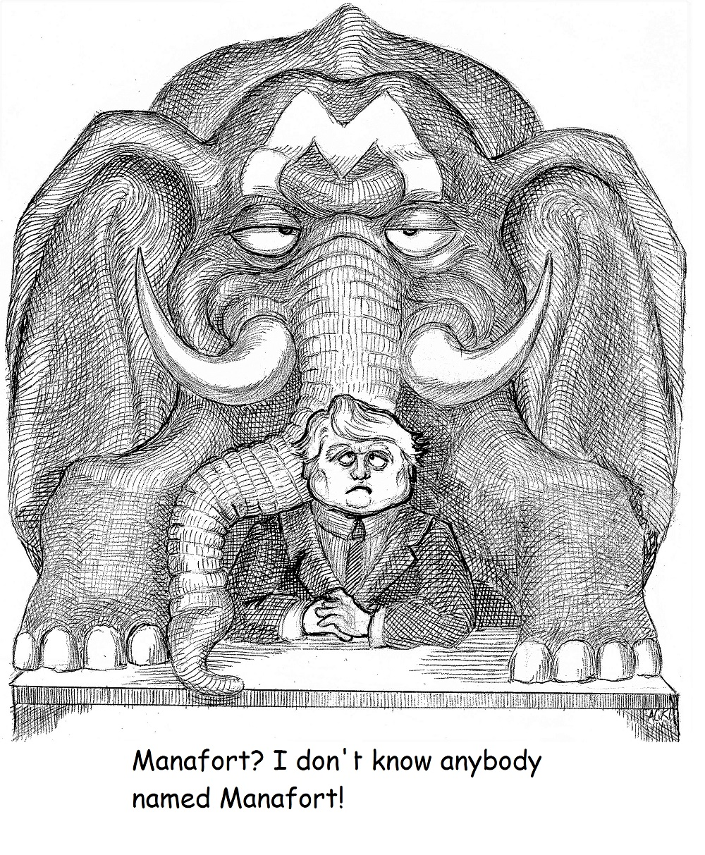 The Elephant In The Room - The Rumpus.net