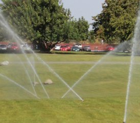 CSUB's water use exceeds a million gallons a day