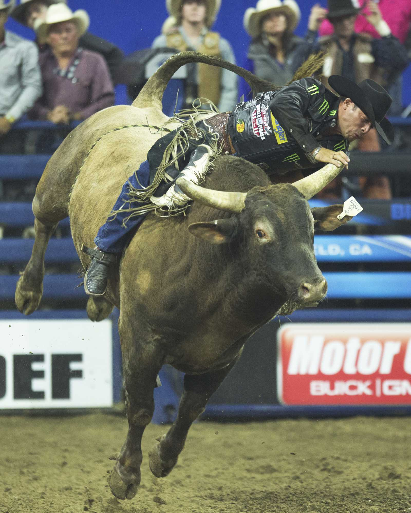 Robson Palermo taps the horn of Leaping Coyote during his ride at the Bakersfield PBR event at Rabobank Arena on Saturday, Nov. 21.