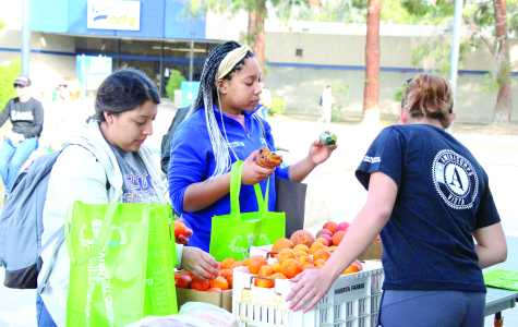 Fresh produce available in new Produce Pantry