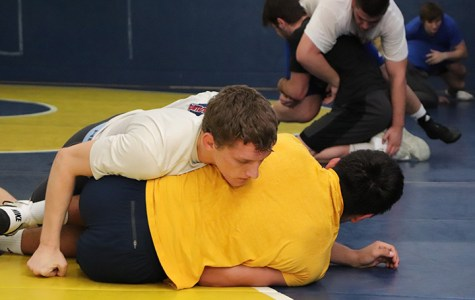 Wrestling bounces back against Bears after tough loss.