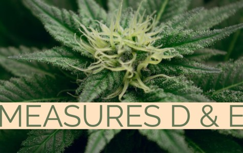 Pot at the polls: What you need to know about measures D and E