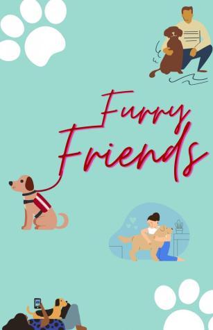 Seeking comfort from furry friends