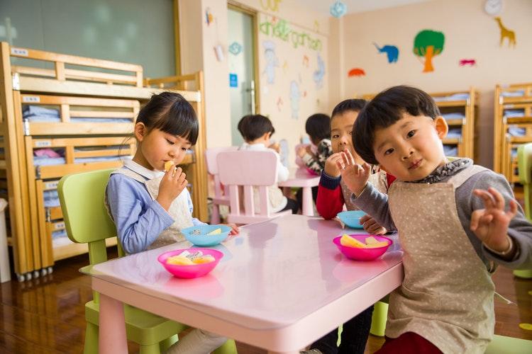 The Role of Preschool in the Process of Child Development