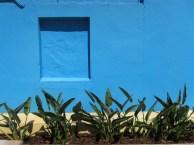 Blue Niche