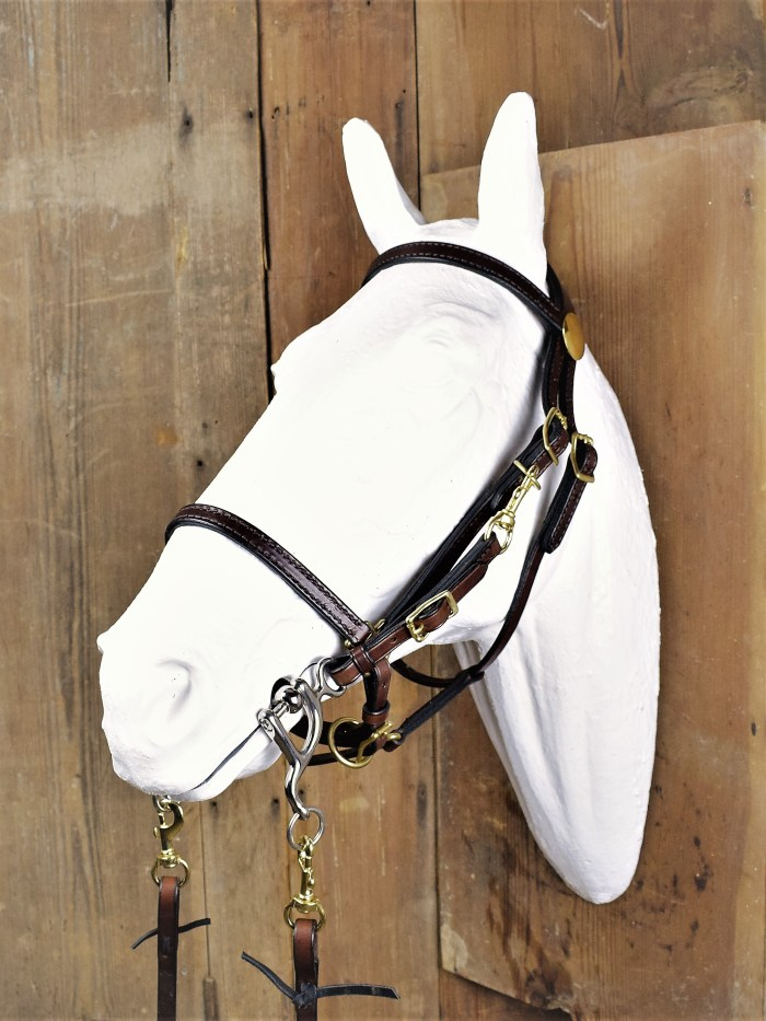 Improved halter bridle by The Saddle Guy