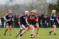 Camogie 10