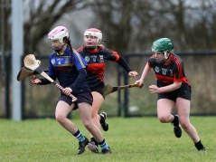 Camogie 12